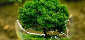 Eco-geste